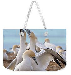 Gannets Weekender Tote Bag