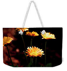 Weekender Tote Bag featuring the photograph Garden Light by Eric Christopher Jackson