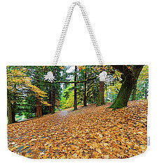 Garden Path Covered In Autumn Leaves Weekender Tote Bag