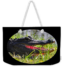 Weekender Tote Bag featuring the photograph Gator Grin .png by Al Powell Photography USA