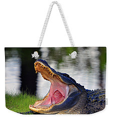 Weekender Tote Bag featuring the photograph Gator Gullet by Al Powell Photography USA