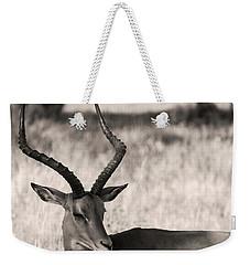 Gazella Weekender Tote Bag