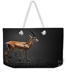 Gazelle Weekender Tote Bag by Charuhas Images