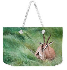 Weekender Tote Bag featuring the painting Gazelle In The Grass by Joshua Martin