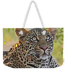 Gazing Leopard Weekender Tote Bag
