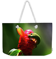 Weekender Tote Bag featuring the photograph Gecko #1 by Anthony Jones