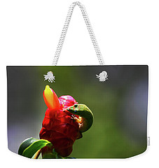 Weekender Tote Bag featuring the photograph Gecko #2 by Anthony Jones