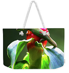 Weekender Tote Bag featuring the photograph Gecko #3 by Anthony Jones