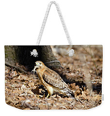 Weekender Tote Bag featuring the photograph Gecko For Lunch by George Randy Bass