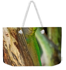 Gecko Up Close Weekender Tote Bag by Pamela Walton