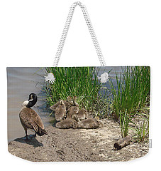 Geese And Goslings Weekender Tote Bag by Ellen Tully