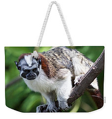 Geoffroy's Tamarin Saguinus Geoffroyi Weekender Tote Bag