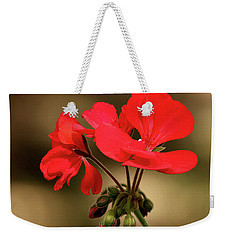Weekender Tote Bag featuring the photograph Geranium Blooms by Sheila Brown