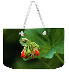 Weekender Tote Bag featuring the photograph Geranium Buds by Cristina Stefan