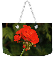 Weekender Tote Bag featuring the photograph Geranium  by Cristina Stefan