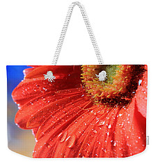 Gerbera Daisy After The Rain Weekender Tote Bag by Angela Murdock