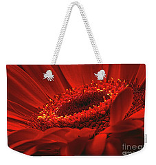 Weekender Tote Bag featuring the photograph Gerbera Daisy In Red by Sharon Talson