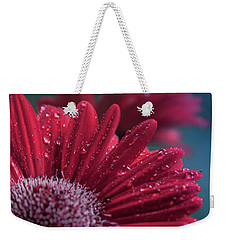 Weekender Tote Bag featuring the photograph Gerbera Red Jewel by Sharon Mau