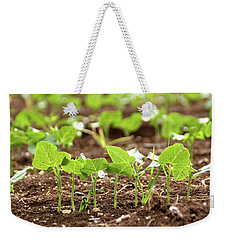 New Sprouts In The Promised Land Weekender Tote Bag by Yoel Koskas