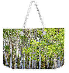 Getting Lost In The Wilderness Weekender Tote Bag by James BO Insogna