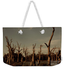Weekender Tote Bag featuring the photograph Ghostly Trees by Douglas Barnard