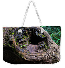 Weekender Tote Bag featuring the photograph Giant Knot In Tree by Scott Lyons