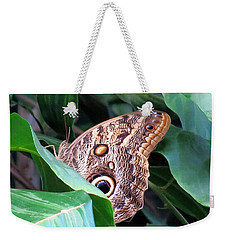 Giant Owl Butterfly Weekender Tote Bag by Betty Buller Whitehead
