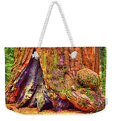 Giant Sequoia Base With Fire Scar Weekender Tote Bag