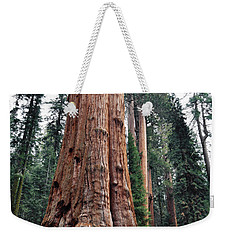 Weekender Tote Bag featuring the photograph Giant Sequoia II by Kyle Hanson