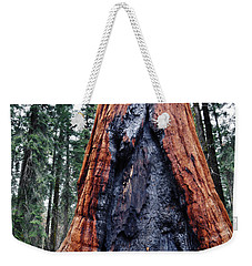 Weekender Tote Bag featuring the photograph Giant Sequoia by Kyle Hanson