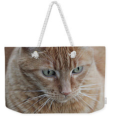 Ginger Cat Weekender Tote Bag
