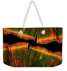 Ginkgo Abstraction2 Weekender Tote Bag
