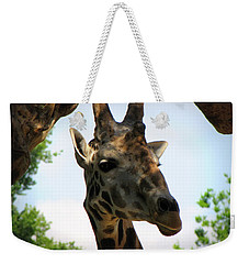 Weekender Tote Bag featuring the photograph Giraffe by Beth Vincent