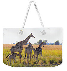 Weekender Tote Bag featuring the photograph Giraffe Family by Betty-Anne McDonald