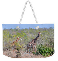 Giraffe Family On Safari Weekender Tote Bag
