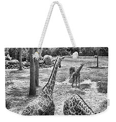 Weekender Tote Bag featuring the photograph Giraffe Reticulated by Howard Salmon