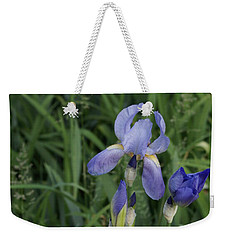 Glads Weekender Tote Bag by Cynthia Powell