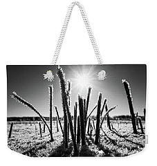 Glare Of The Spring Sun Weekender Tote Bag