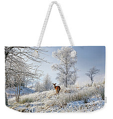 Weekender Tote Bag featuring the photograph Glen Shiel Misty Winter Deer by Grant Glendinning