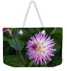 Glenbank Twinkle Dahlia 3 Weekender Tote Bag