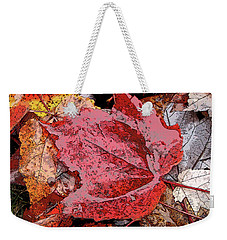Weekender Tote Bag featuring the photograph Glistening by Betsy Zimmerli