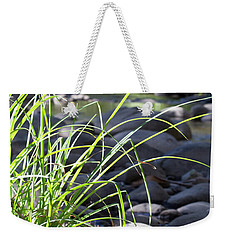 Weekender Tote Bag featuring the photograph Glistening In The Sunlight by Linda Lees