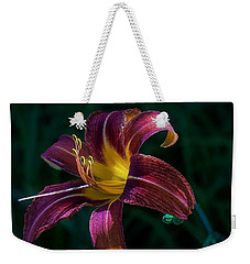 Weekender Tote Bag featuring the photograph Glorious by Kendall McKernon