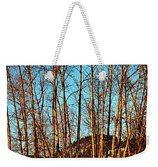 Weekender Tote Bag featuring the photograph Glow Of The Setting Sun by Will Borden