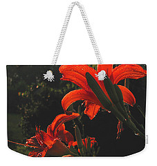 Weekender Tote Bag featuring the photograph Glowing Day Lilies by Donna Brown