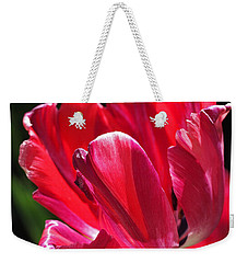 Glowing Red Tulip Weekender Tote Bag by Rona Black