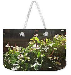 Glowing White Anthuriums Weekender Tote Bag