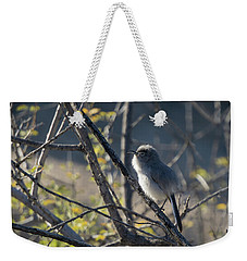 Gnatcatcher Weekender Tote Bag