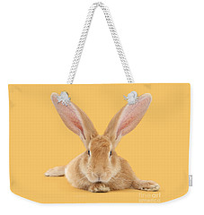 Go Ahead I'm All Ears Weekender Tote Bag