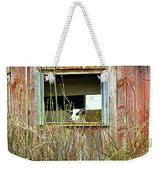 Goat In The Window Weekender Tote Bag by Donald C Morgan